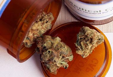 pensacola-420-doctor-USING-CANNABIS-MEDICINALLY